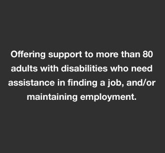 employment support for adults with disabilities